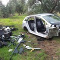 Auto rubate e cannibalizzate nascoste nelle campagne di Bitonto