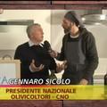 Il 'si' di Coldiretti alle miscele di oli italiani con oli extracomunitari indigna il settore