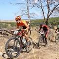 Oggi a Bitonto l'Iron Bike sulle alture della Murgia