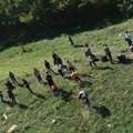 Una passeggiata ecologica per ripulire le periferie di Bitonto