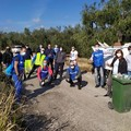 Via Traiana ripulita a Bitonto grazie a Sanb e volontari