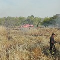 Più sanzioni e controlli dai Carabinieri Forestali contro gli incendi boschivi