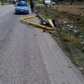 Auto fuori strada sulla 231, paura ma nessun ferito