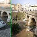 La Sanb Bitonto ripulisce dai rifiuti il ponte su Lama Balice