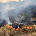 Ancora fiamme a Lama Balice (VIDEO)