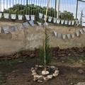 Festa dell'Albero alla primaria Caiati di Bitonto