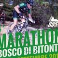 La Marathon del Bosco in mountain bike svela le meraviglie della Murgia bitontina