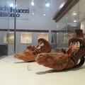 Le antiche origini peucete di Bitonto protagoniste domani al Museo De Palo-Ungaro