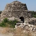 «I pagliari di Bitonto rischiano di essere distrutti»