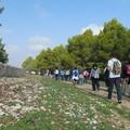 Domenica passeggiata nell'Alta Murgia di Bitonto con Fare Verde