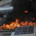 Fare Verde Bitonto: «L'incendio di Palo più grande disastro ambientale della nostra città»