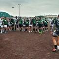 Rugby: i Grifoni bitontini tornano alla vittoria contro i Panthers Modugno