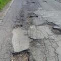 Manutenzione strade rurali di Bitonto: pronti 140mila euro