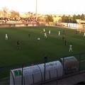 Usd Bitonto, col Picerno il cuore non basta: al Degli Ulivi finisce 2-1