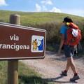 Passeggiate lungo la Via Francigena, nel bosco e in bicicletta a Bitonto per la SEMS 19