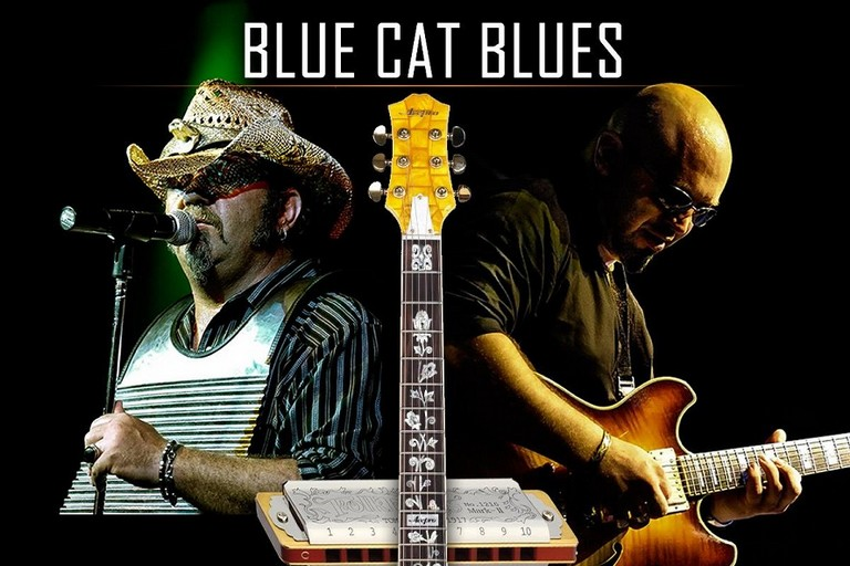 blue cat blues