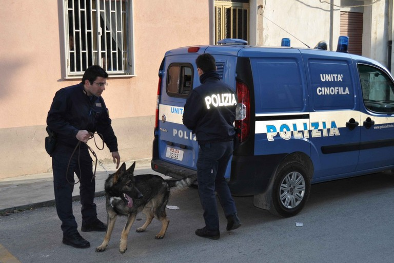 Le unità cinofile della Polizia di Stato