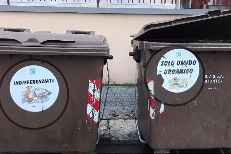 Cassonetti uguali per rifiuti differenti