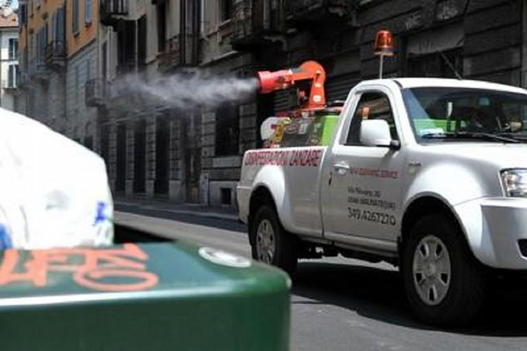 disinfestazione blatte topi scarafaggi fg
