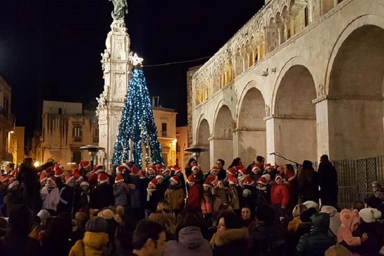 I canti sotto lalbero di piazza Cattedrale