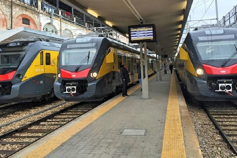 I treni della Ferrotramviaria
