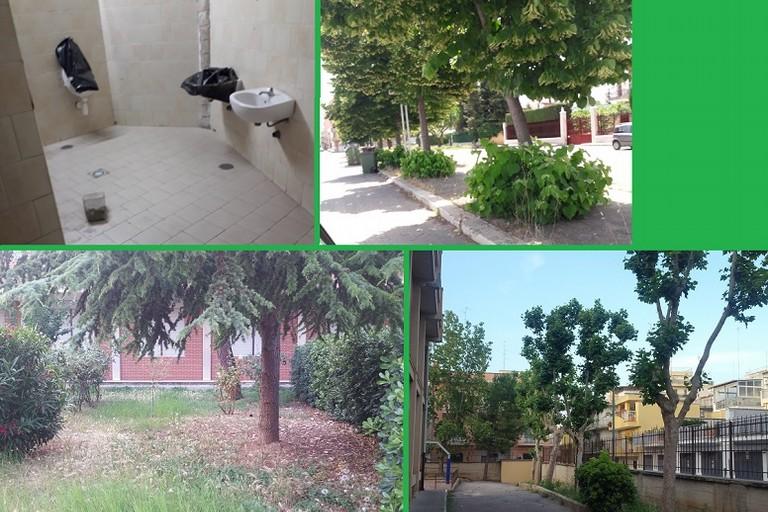 Il degrado del verde pubblico individuato dal comitato Bitonto Stelle