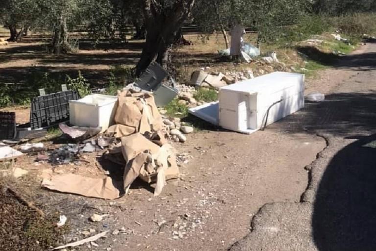 «A Bitonto la via Francigena passa fra i rifiuti»