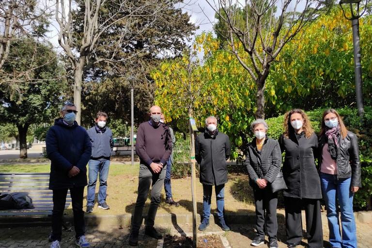 La quercia piantata in memoria di Vincenzo Schiraldi