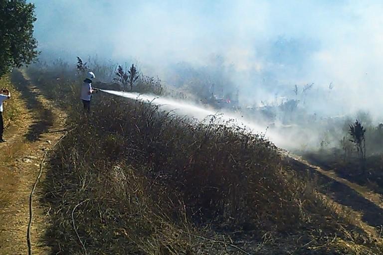 Incendio di sterpaglie sulla Bitonto Palese