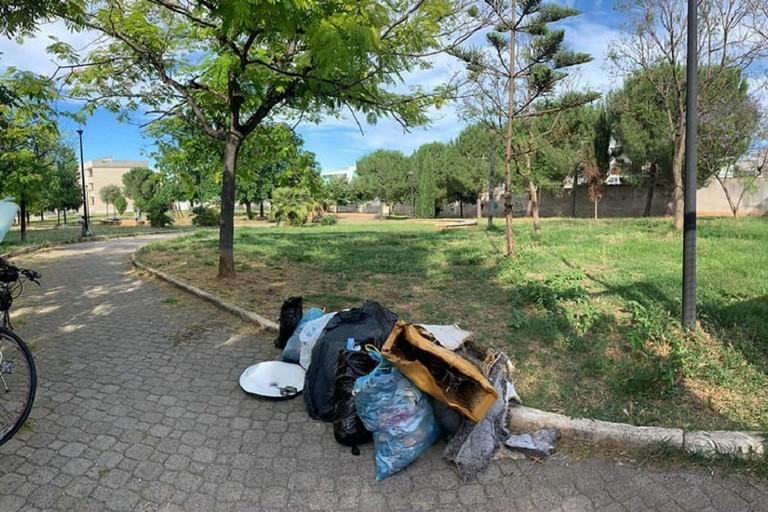 Limmondizia raccolta in parco Senatore Masciale a Bitonto