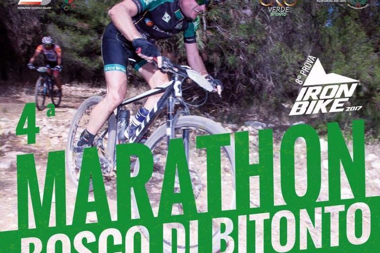 Marathon bosco Bitonto