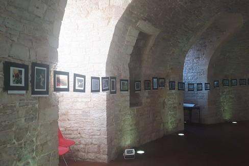 3 ^ concorso fotografico Elvira Scaraggi presso il Torrione Angioino