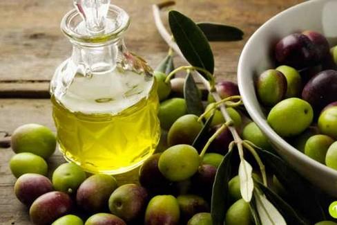 olio di oliva x