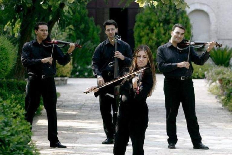 Quartetto darchi